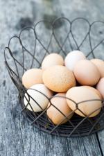 eggsinbasket